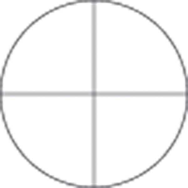 Microscope Eyepiece Reticles Microscope Eyepiece Reticle