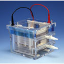 Electrophoresis for your Lab and Research
