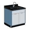 Representative photo only Hamilton Scientific Laboratory Assembly 4 Ft Sink and Cabinet