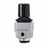 Representative photo only Miniature Regulator 0 To 10 PSIG 1 8 NPT F